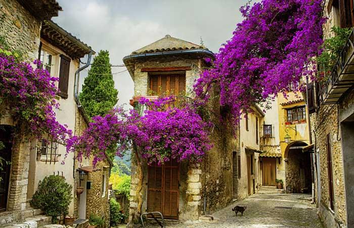 Provence: Romantika pro náročné