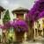 Provence-C